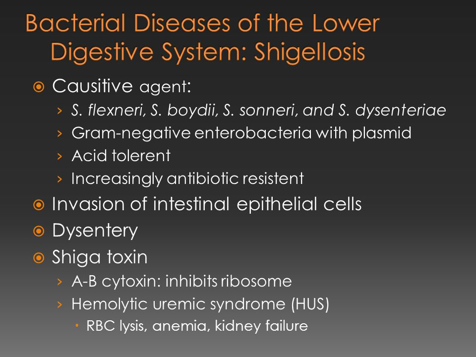 Bacterial Diseases of the Lower Digestive System: Shigellosis
