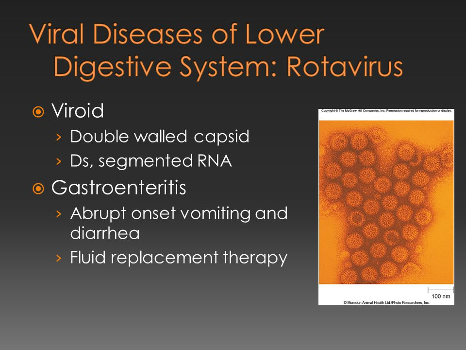 Viral Diseases of Lower Digestive System: Rotavirus