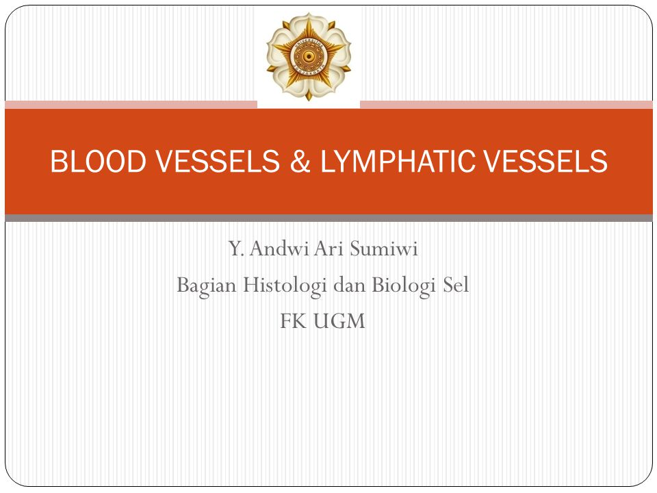 BLOOD VESSELS & LYMPHATIC VESSELS