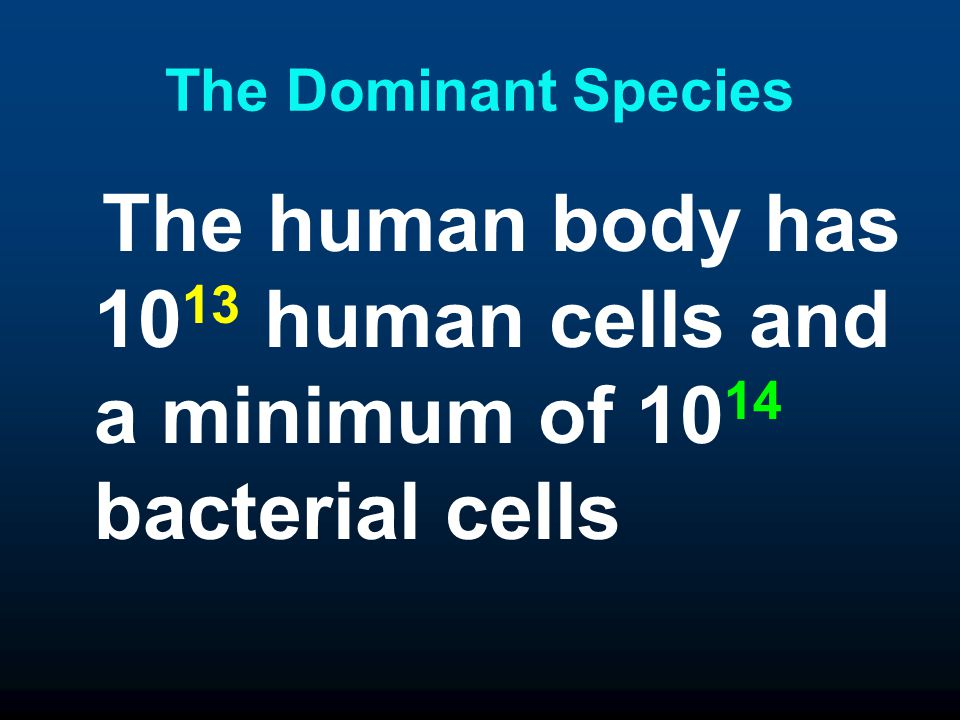 The Dominant Species The human body has 1013 human cells and a minimum of 1014 bacterial cells