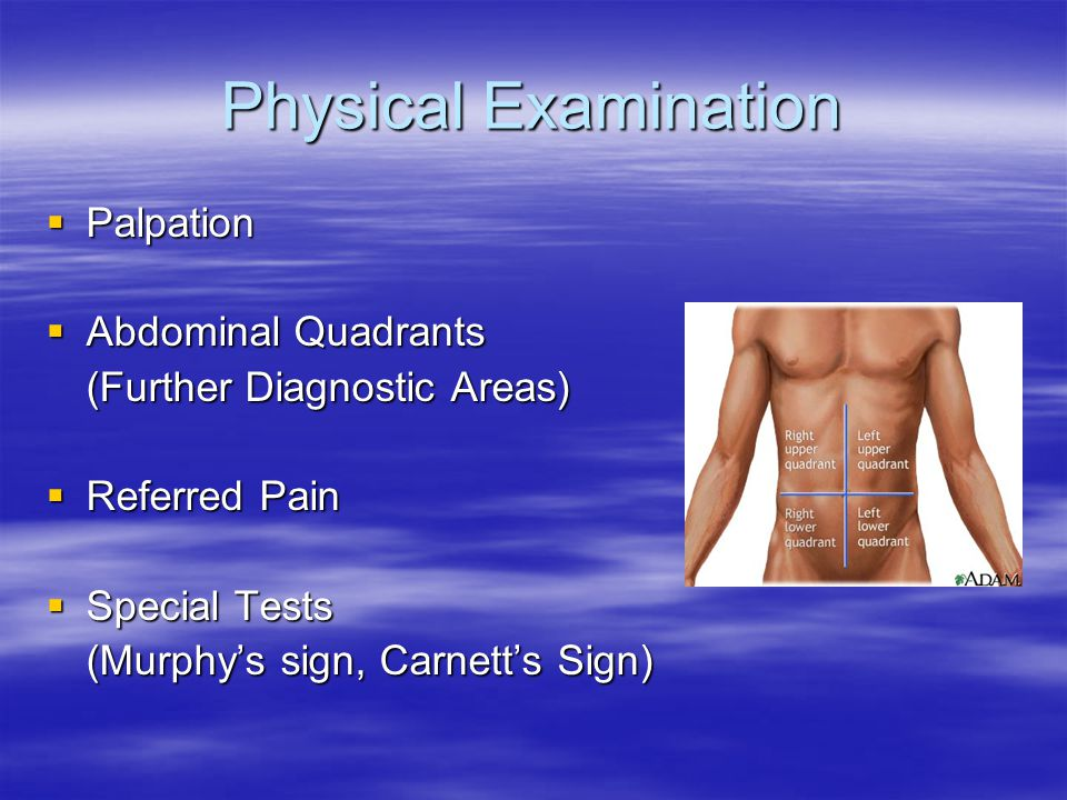 Physical Examination Palpation Abdominal Quadrants