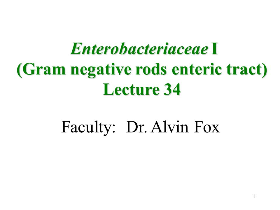 (Gram negative rods enteric tract)