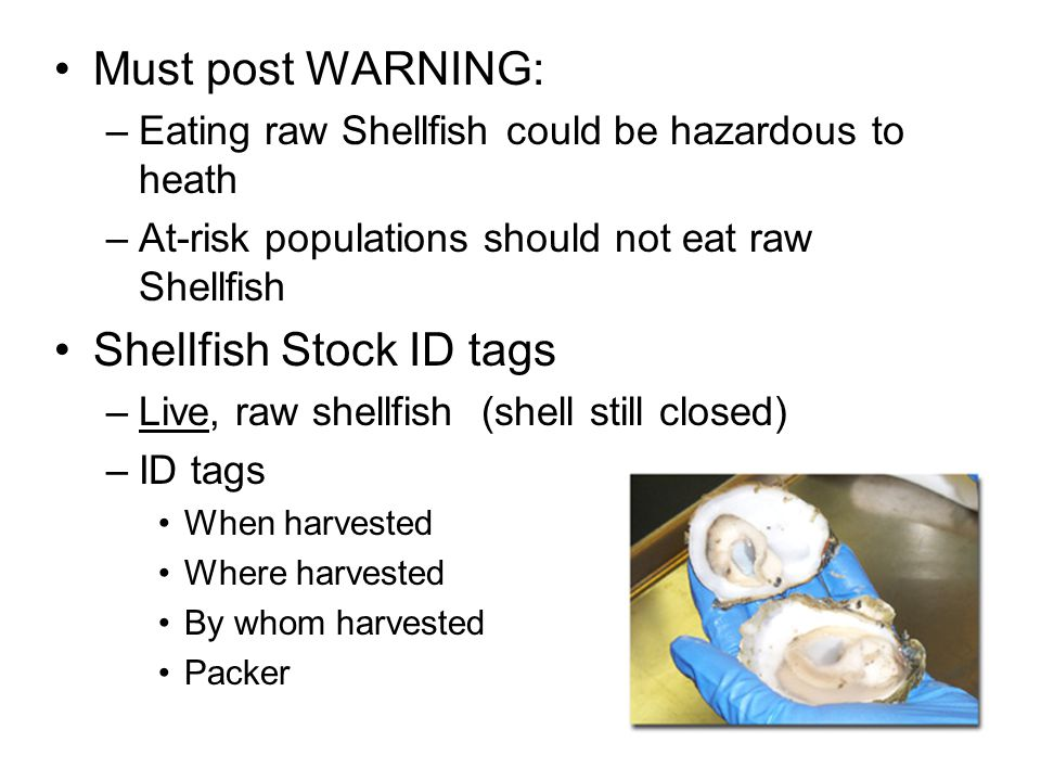 Shellfish Stock ID tags