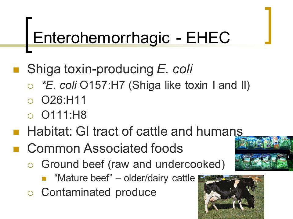 Enterohemorrhagic - EHEC