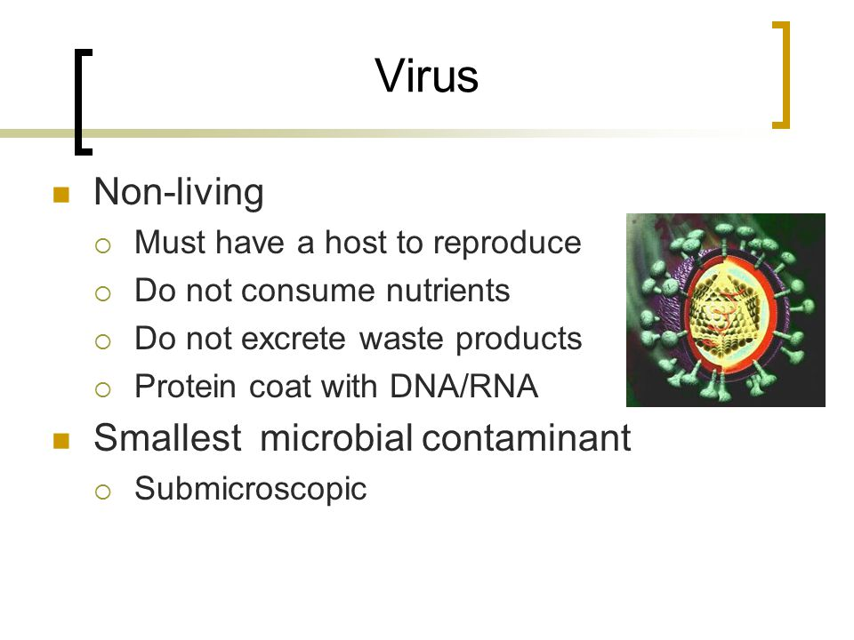 Virus Non-living Smallest microbial contaminant