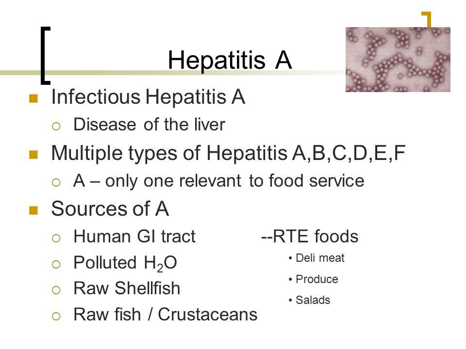 Hepatitis A Infectious Hepatitis A