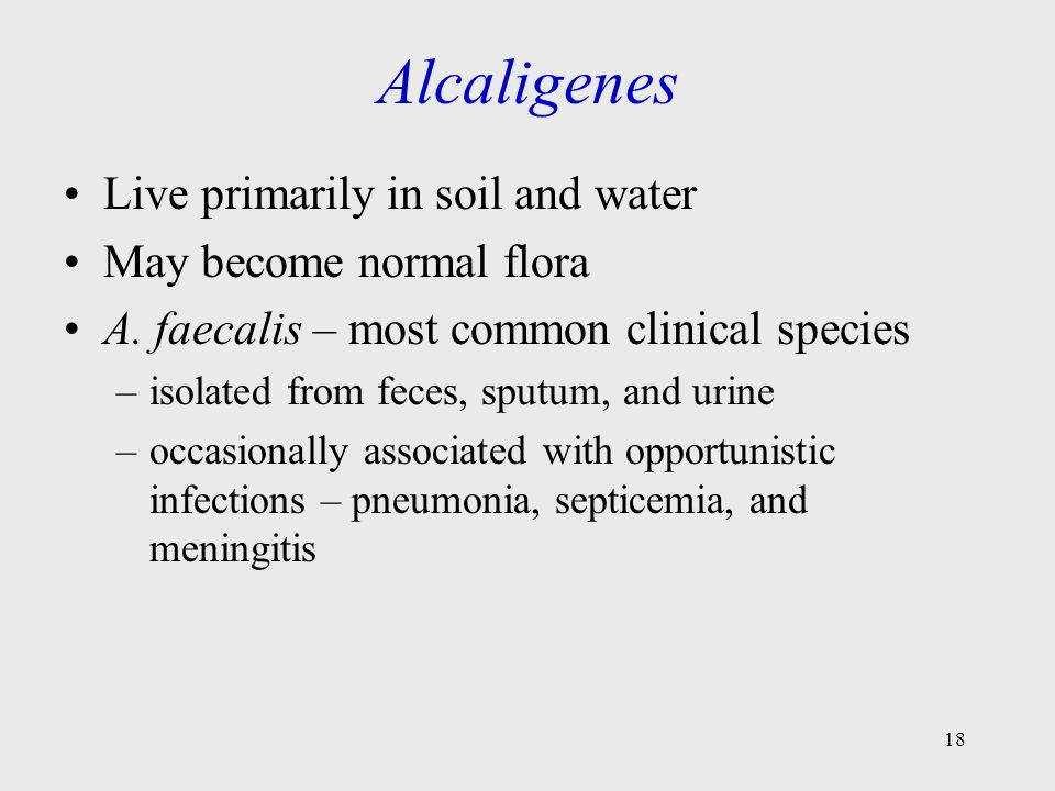 Alcaligenes Live primarily in soil and water May become normal flora
