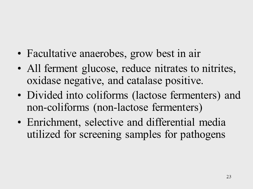 Facultative anaerobes, grow best in air