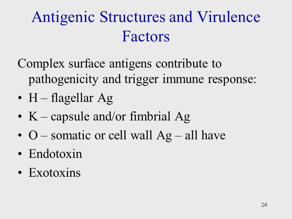 factors that contribute to the structure Please help improve this article by adding citations to reliable sources  unsourced material may be challenged and removed (february 2014) (learn  how and when to remove this template message) a growth factor is a naturally  occurring substance capable of stimulating cellular growth,.