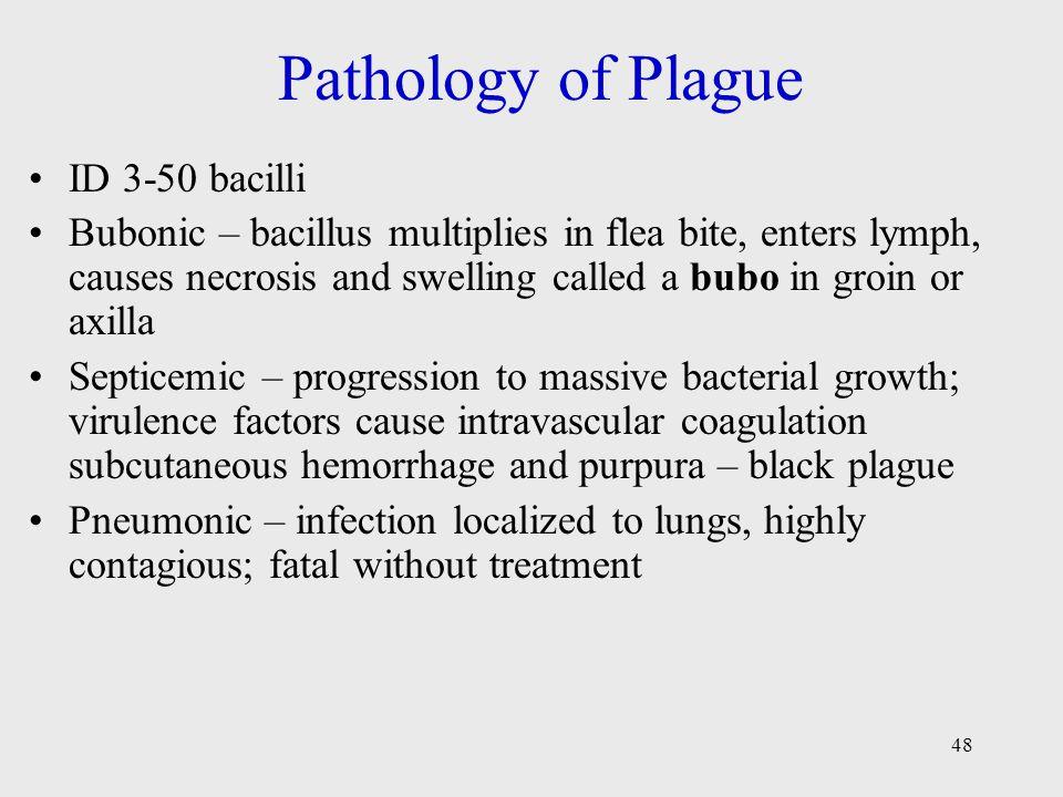 Pathology of Plague ID 3-50 bacilli