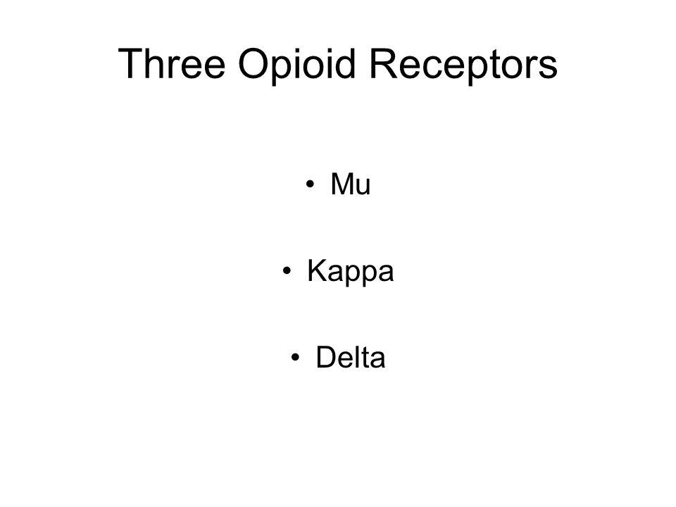 Three Opioid Receptors