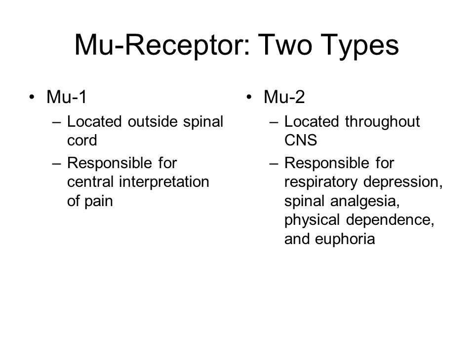 Mu-Receptor: Two Types