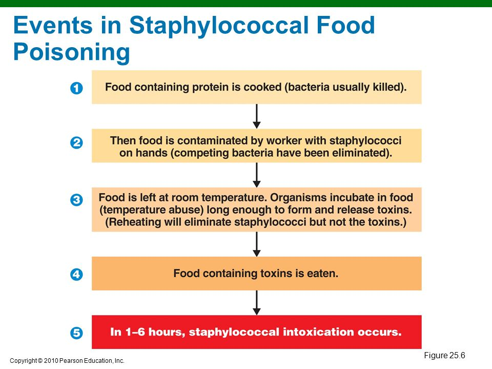 Events in Staphylococcal Food Poisoning