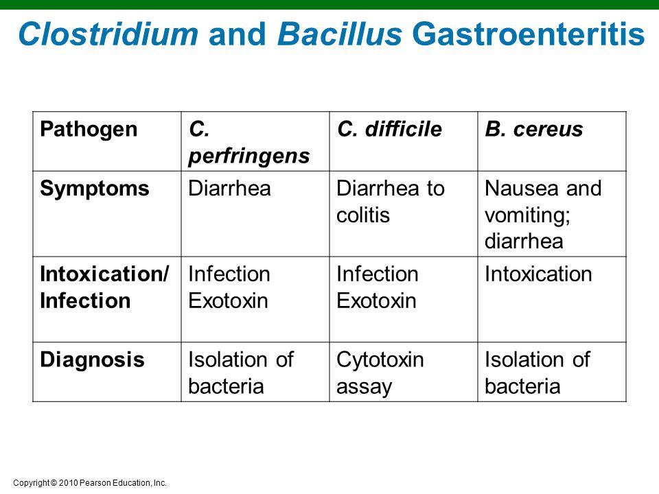 Clostridium and Bacillus Gastroenteritis