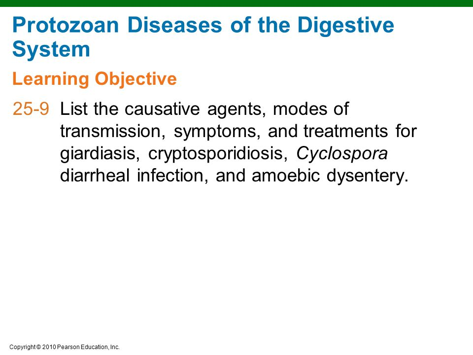 Protozoan Diseases of the Digestive System