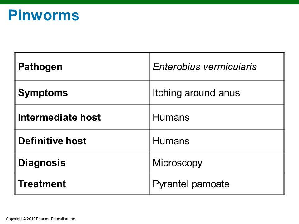 Pinworms Pathogen Enterobius vermicularis Symptoms Itching around anus