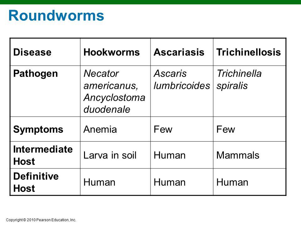 Roundworms Disease Hookworms Ascariasis Trichinellosis Pathogen