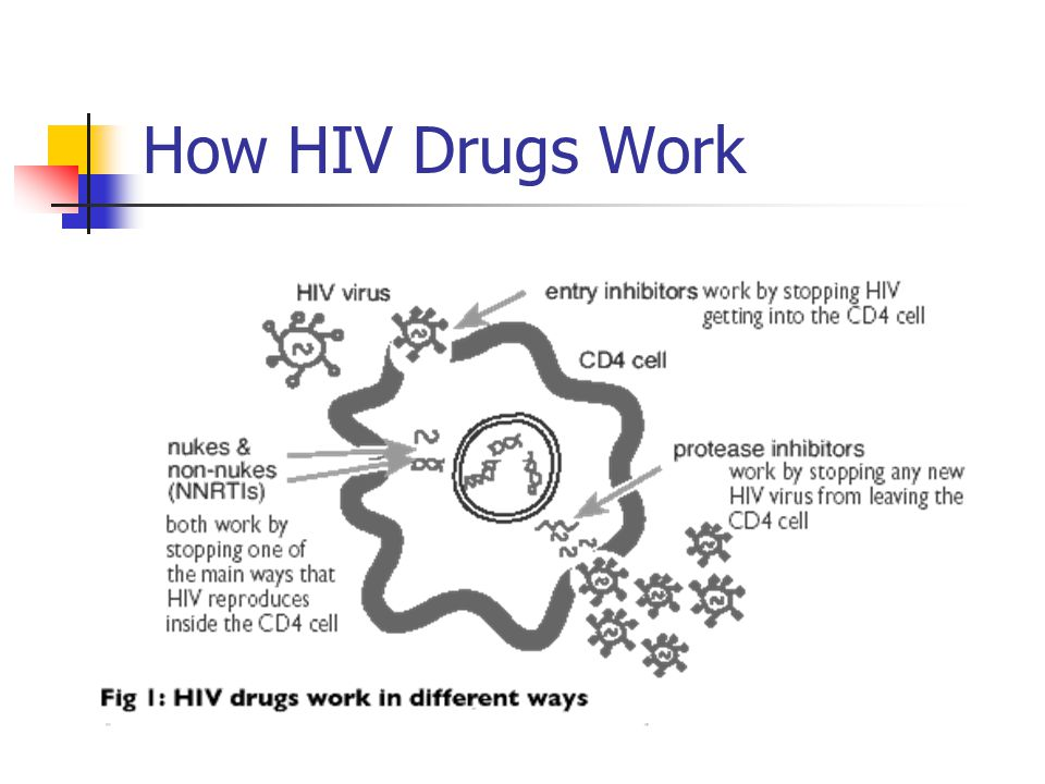 How HIV Drugs Work HIV drugs work in different ways: