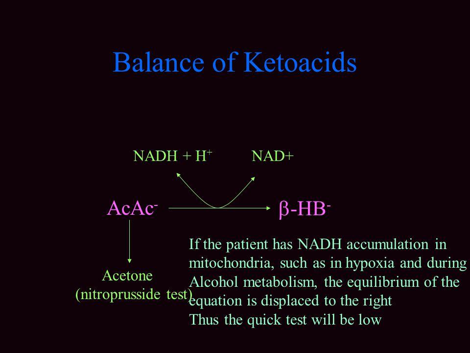 Balance of Ketoacids AcAc- -HB- NADH + H+ NAD+