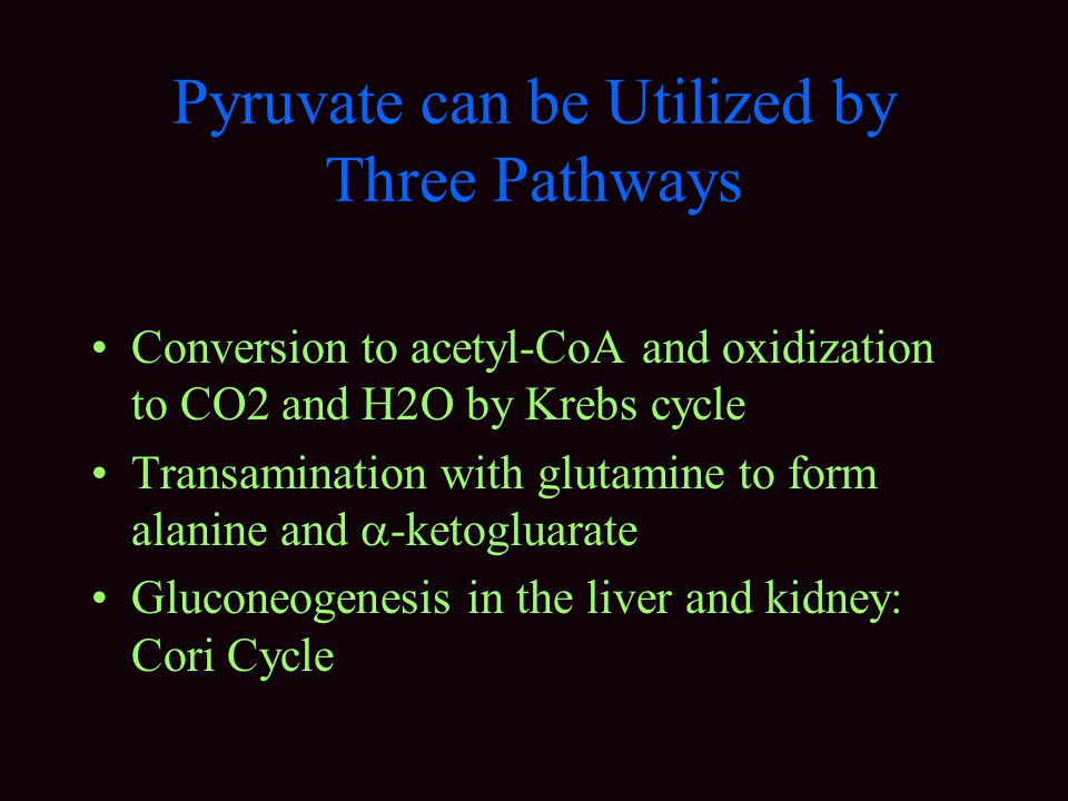 Pyruvate can be Utilized by Three Pathways