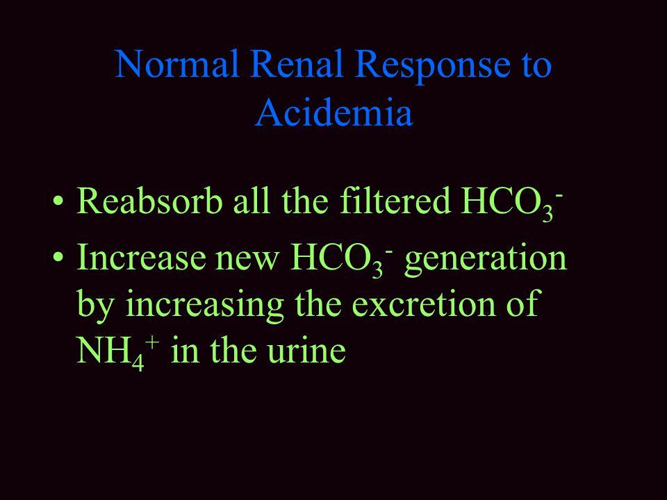 Normal Renal Response to Acidemia