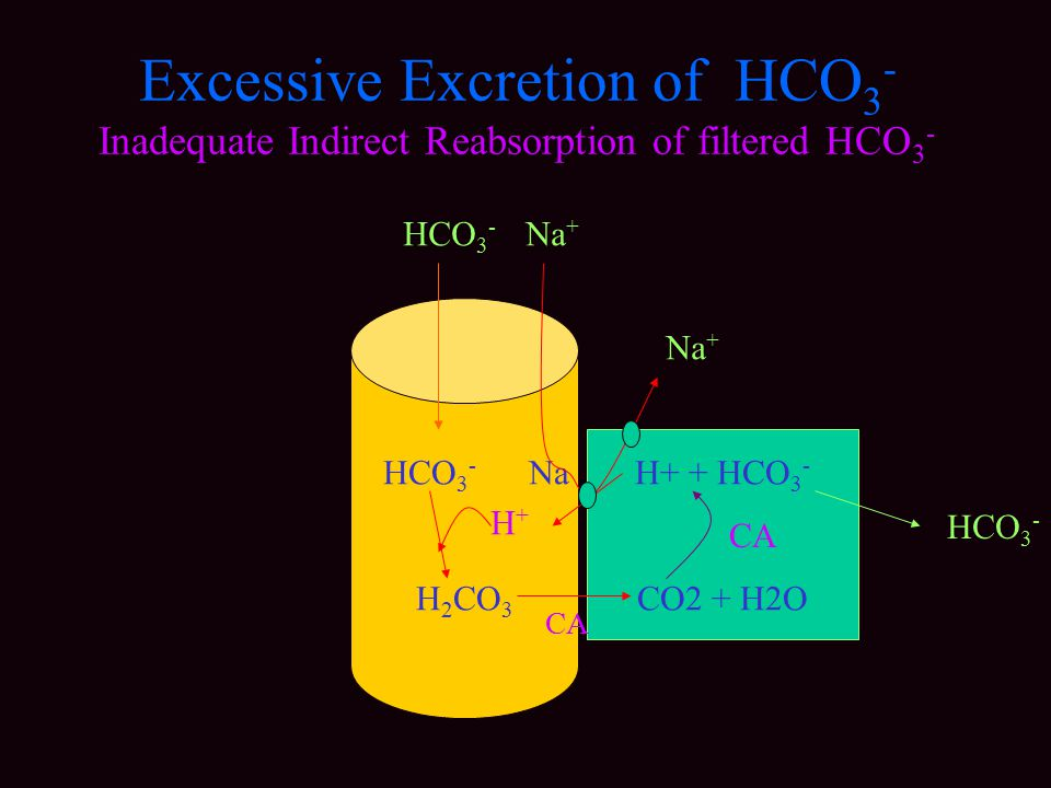 Excessive Excretion of HCO3- Inadequate Indirect Reabsorption of filtered HCO3-