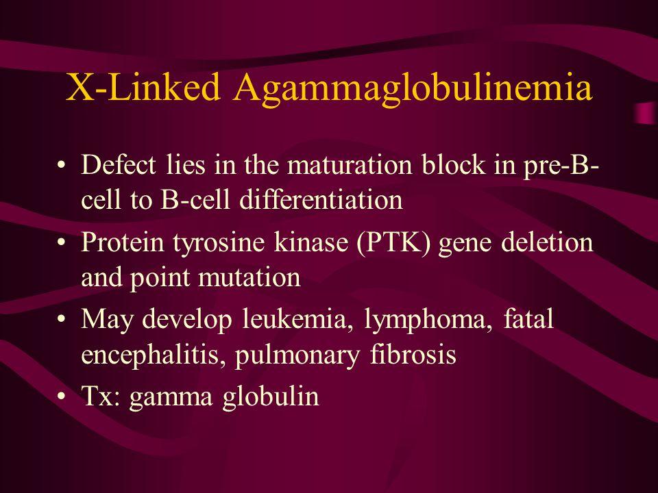 X-Linked Agammaglobulinemia
