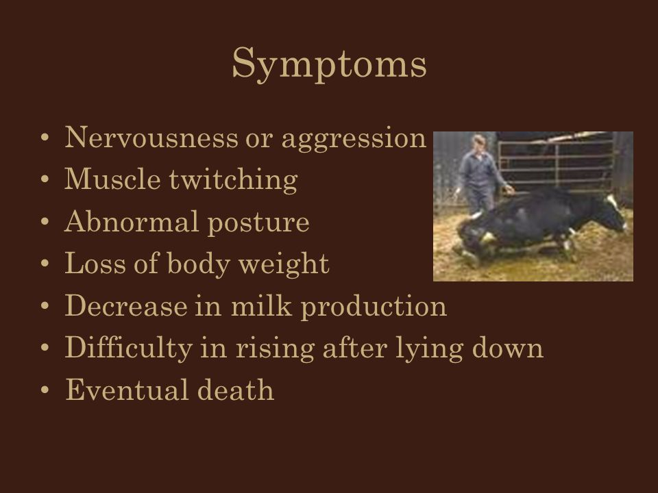 Symptoms Nervousness or aggression Muscle twitching Abnormal posture