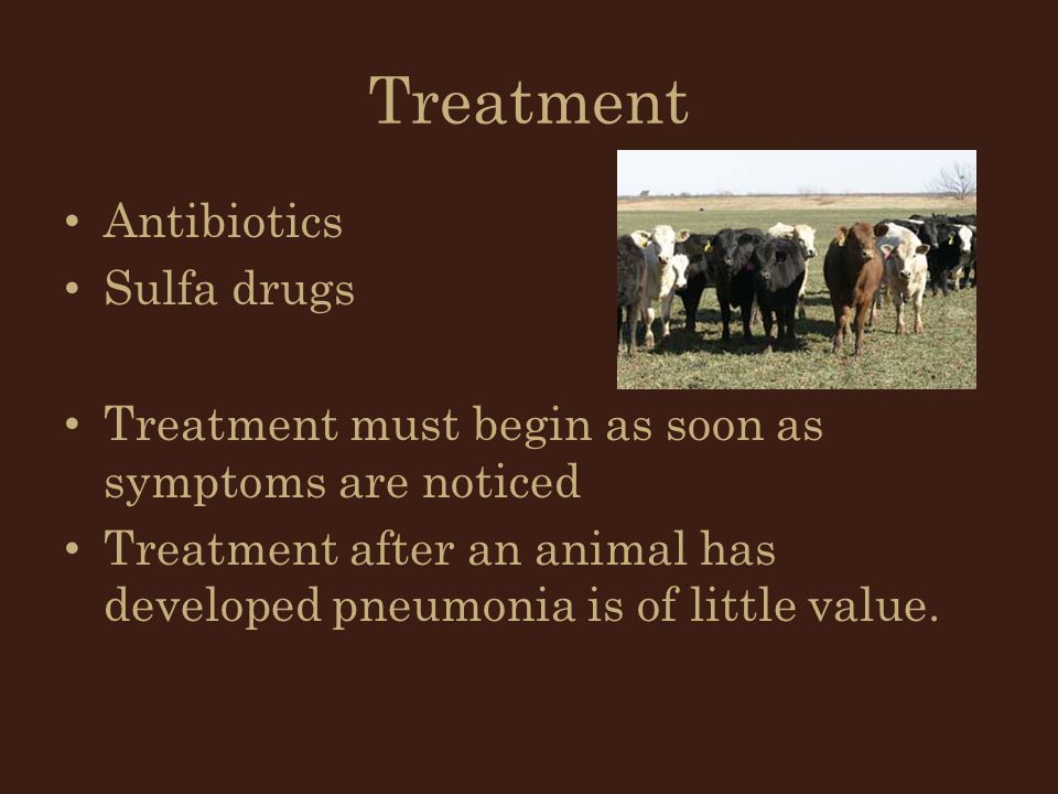 Treatment Antibiotics Sulfa drugs