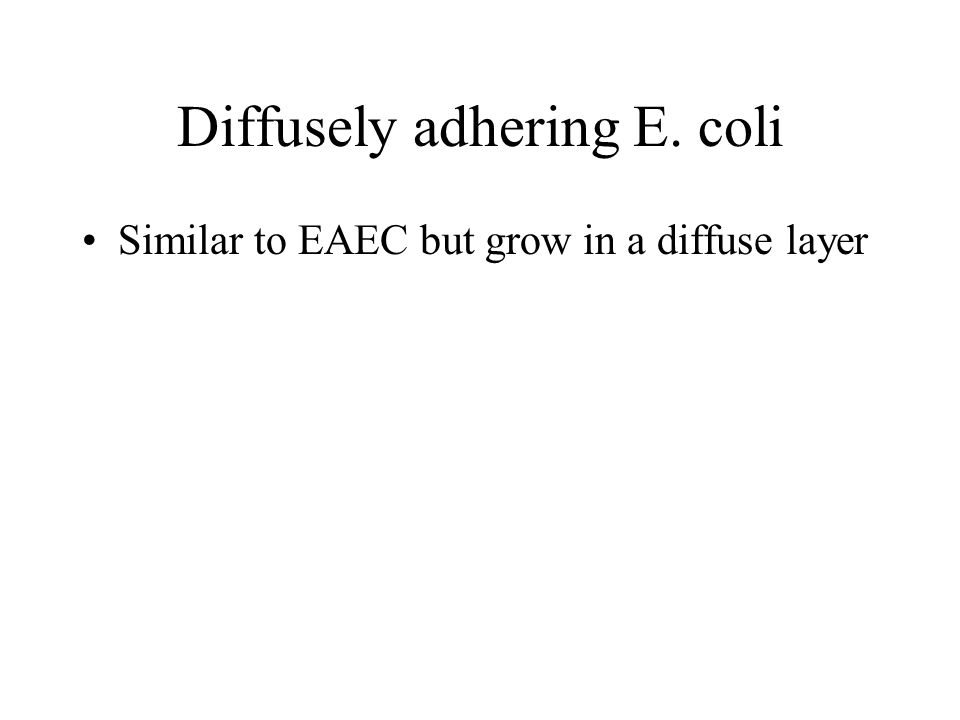 Diffusely adhering E. coli