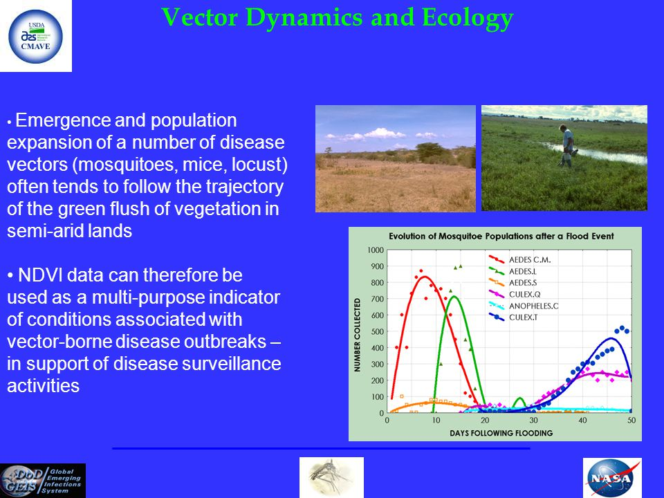 Vector Dynamics and Ecology