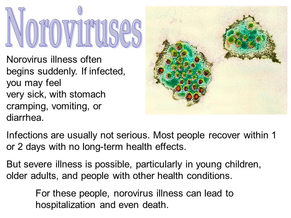 Noroviruses Norovirus illness often begins suddenly. If infected,