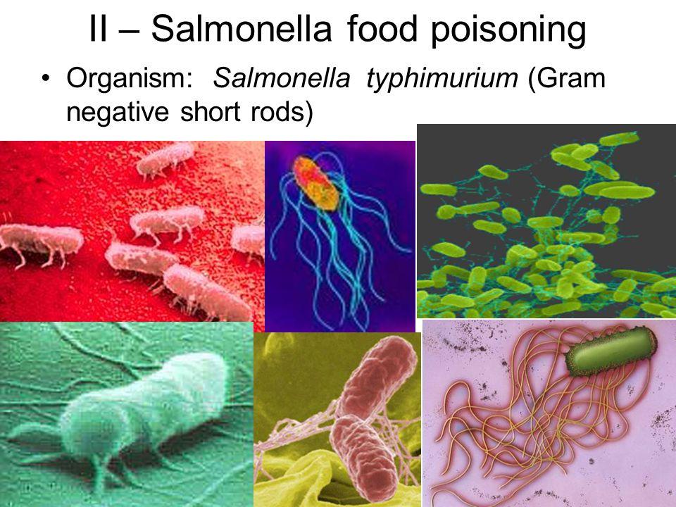 II – Salmonella food poisoning
