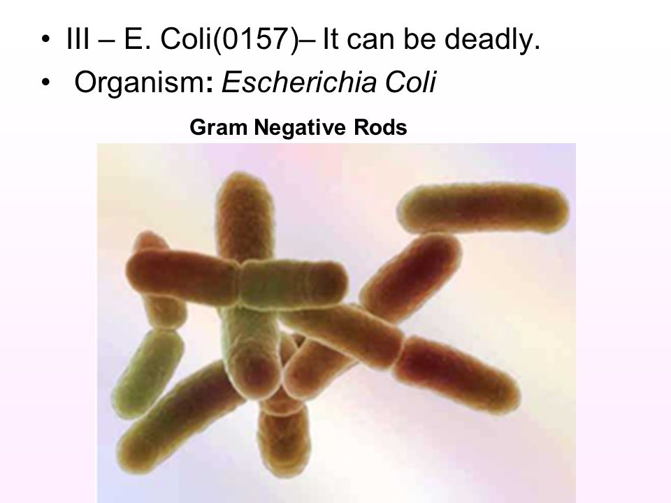 III – E. Coli(0157)– It can be deadly.