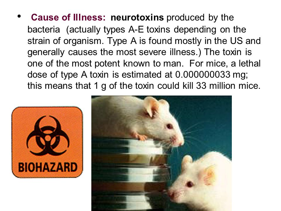 Cause of Illness: neurotoxins produced by the bacteria (actually types A-E toxins depending on the strain of organism.