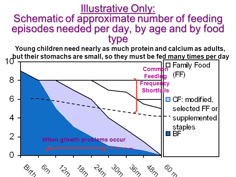 Illustrative Only: Schematic of approximate number of feeding episodes needed per day, by age and by food type