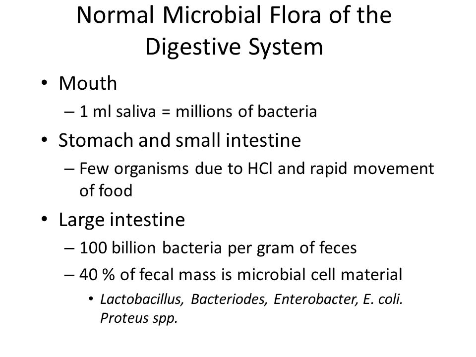 Normal Microbial Flora of the Digestive System
