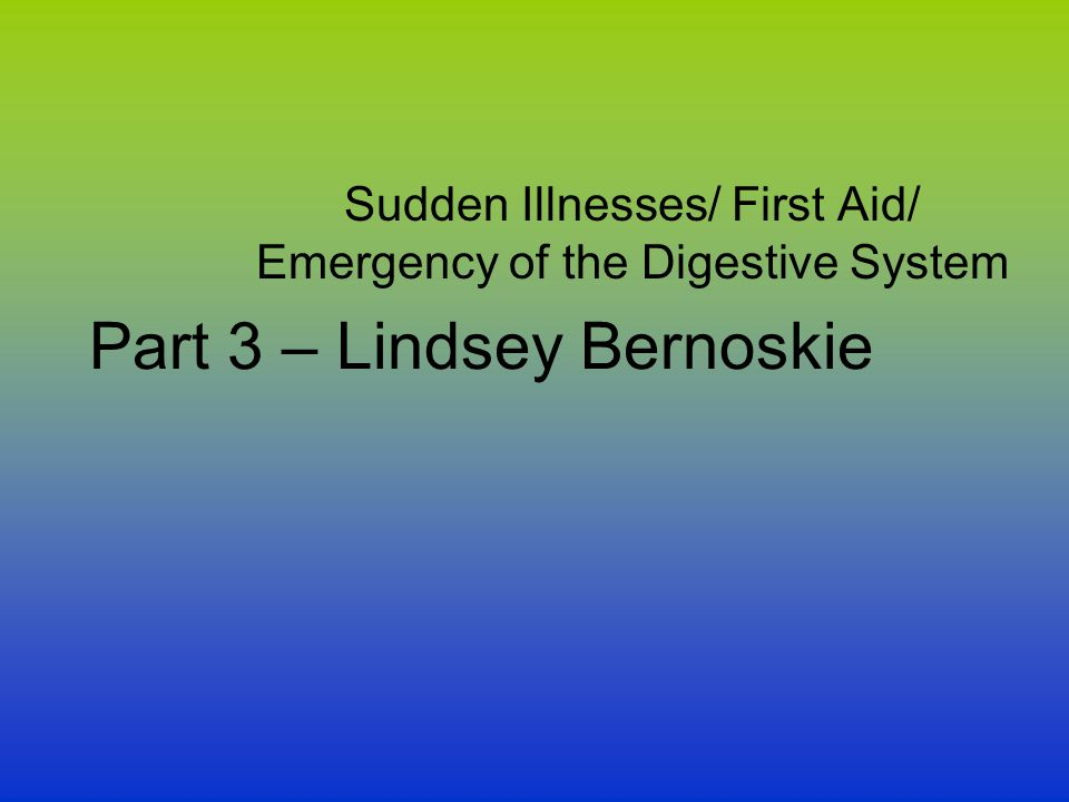 Part 3 – Lindsey Bernoskie