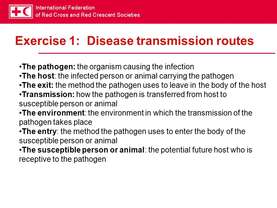 Exercise 1: Disease transmission routes