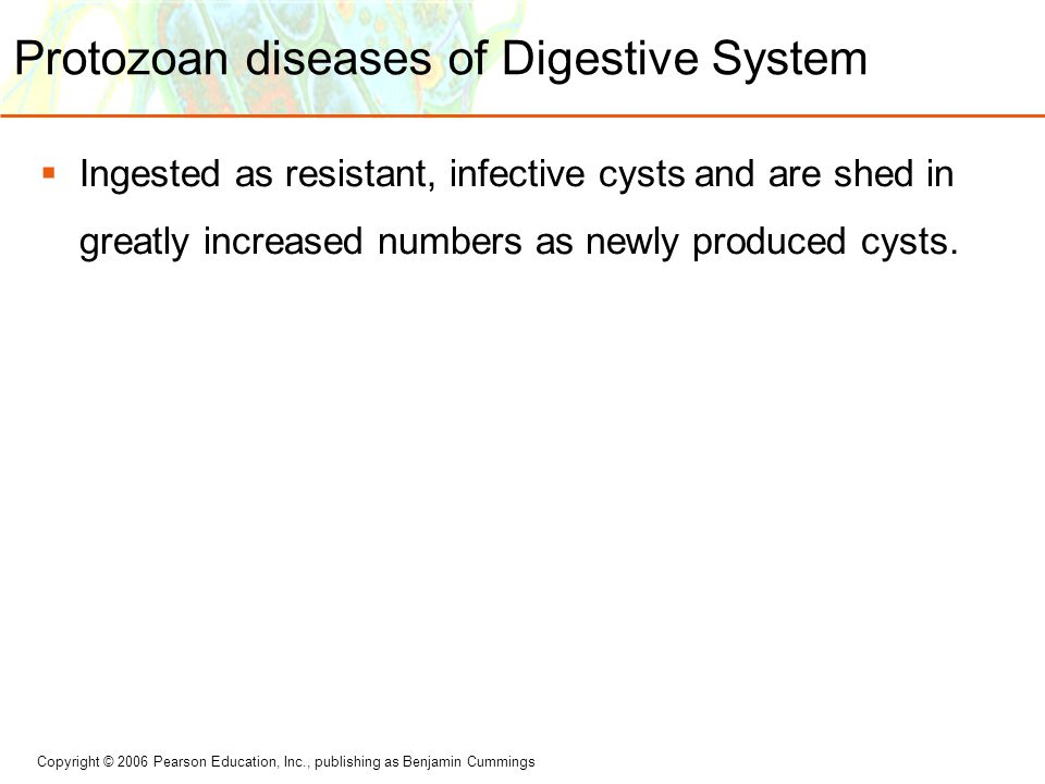 Protozoan diseases of Digestive System