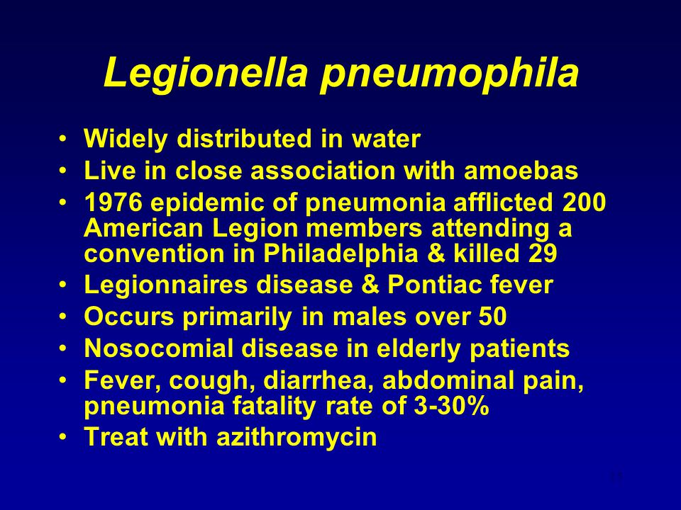 Legionella pneumophila