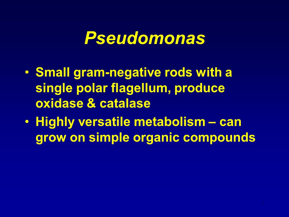 Pseudomonas Small gram-negative rods with a single polar flagellum, produce oxidase & catalase.