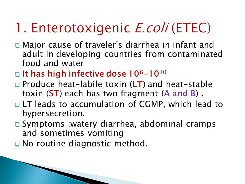 1. Enterotoxigenic E.coli (ETEC)