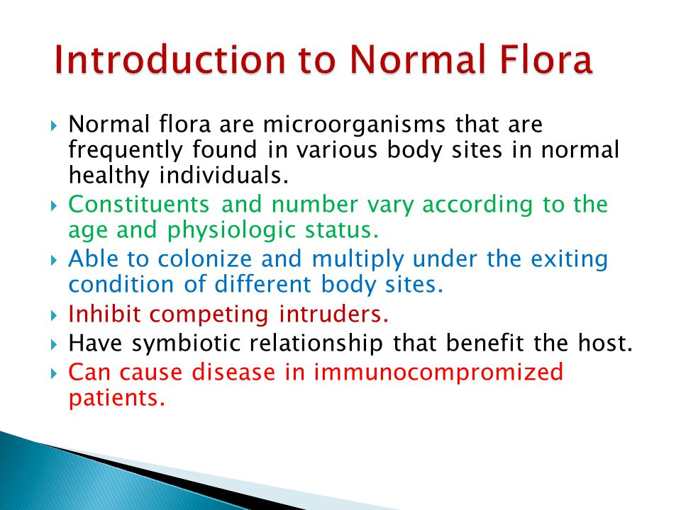 Introduction to Normal Flora