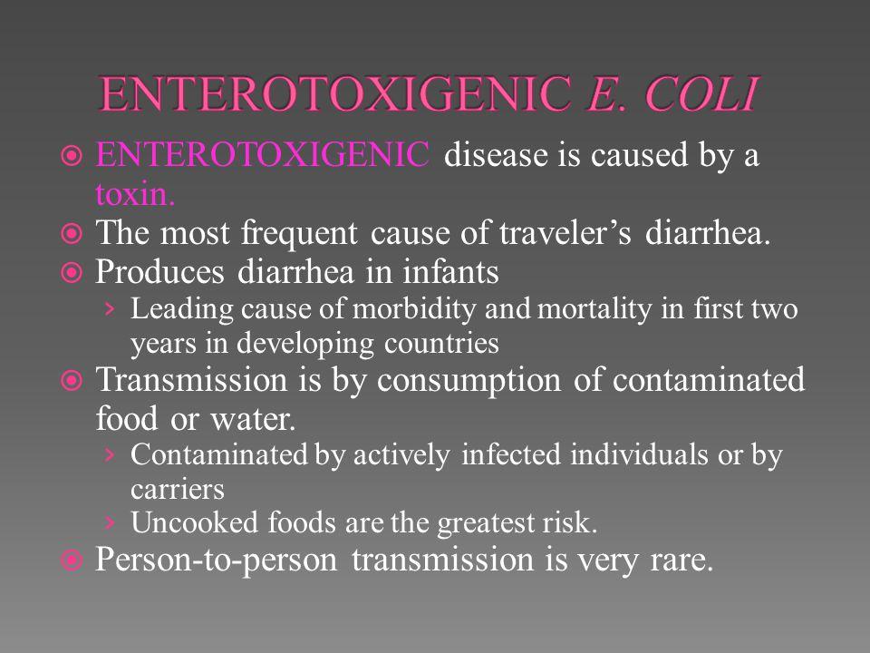 ENTEROTOXIGENIC E. COLI