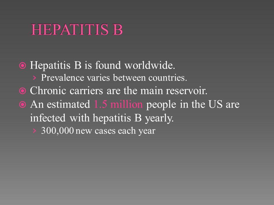 HEPATITIS B Hepatitis B is found worldwide.