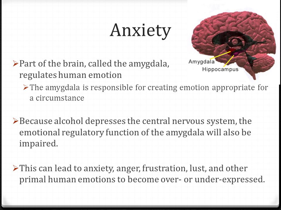 Anxiety Part of the brain, called the amygdala, regulates human emotion.