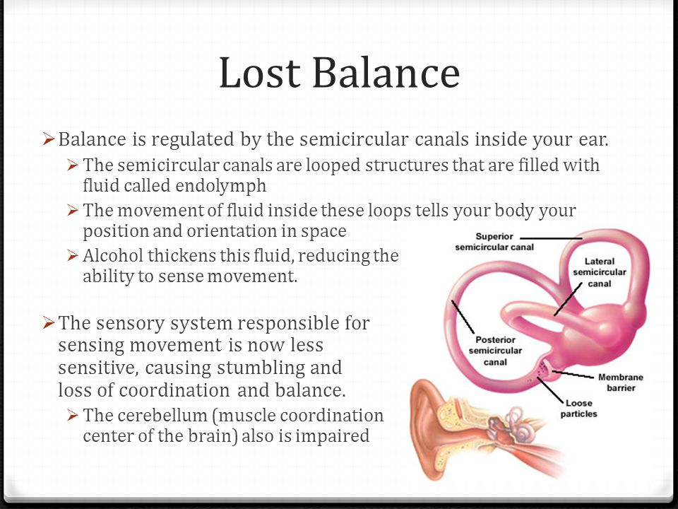 Lost Balance Balance is regulated by the semicircular canals inside your ear.