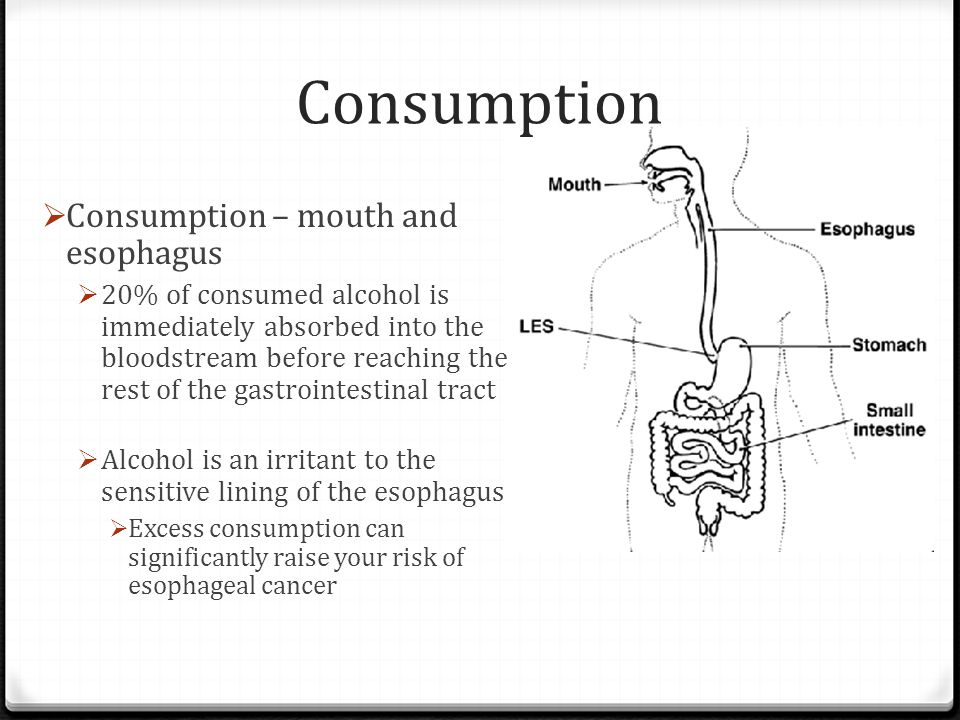 Consumption Consumption – mouth and esophagus