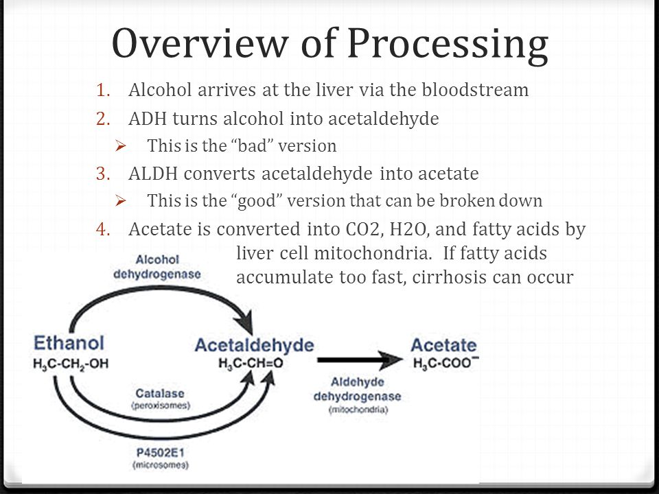 Overview of Processing